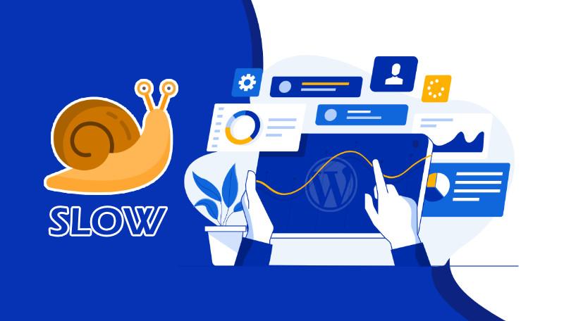 Những nguyên nhân khiến website Wordpress của bạn bị chậm